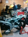 rebirth of a triumph daytona