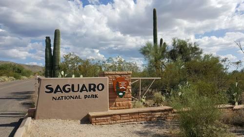Saguaro National Park Arizona in a Boxster 3